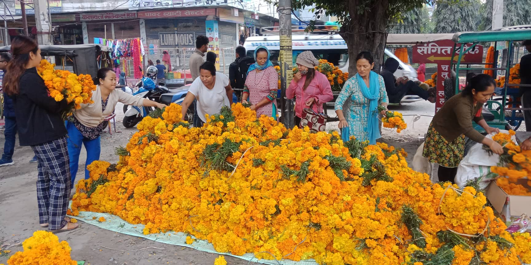 flower byapar  (1)